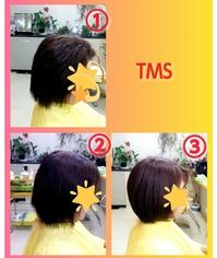 TMS 3セット
